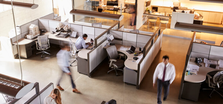 people working in an office in cubicles